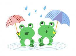 梅雨の季節になりましたね